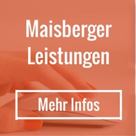 Leistungen Maisberger - Detailbild Laptop